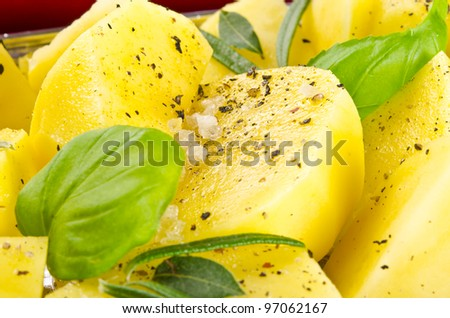 fresh fried potatoes - stock photo