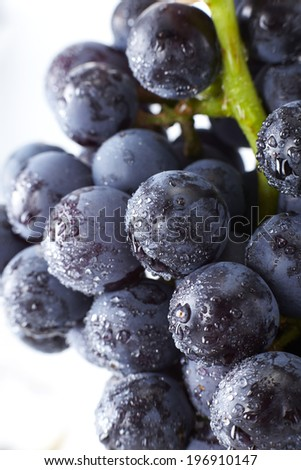 Fresh fruit,closeup black grapes  - stock photo
