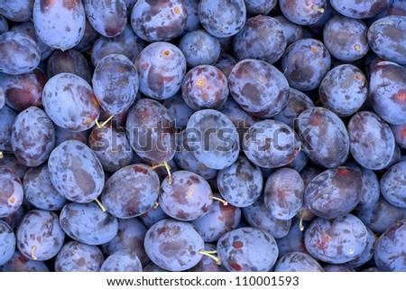 Fresh fruits plums background - stock photo