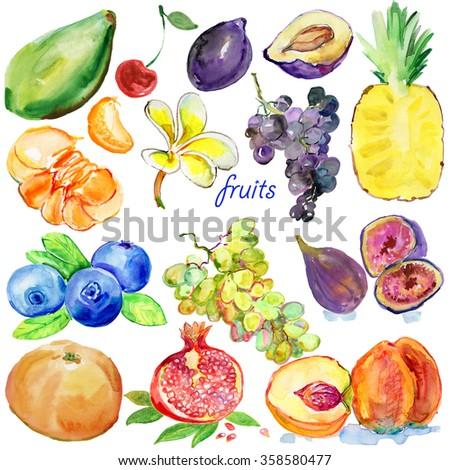 Fresh fruits. Set of different fruits: plum, grape, guava, peach, fig, kiwi, gooseberry, cherry, strawberry, ananas, pomegranate, plum, mandarin and flower.  Fresh organic food. - stock photo