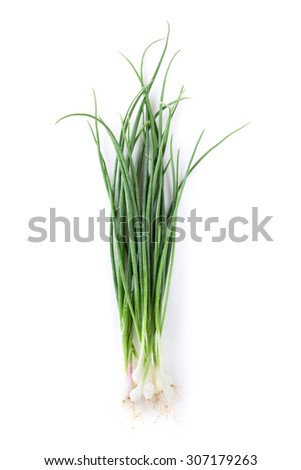 Fresh garden herbs. Spring onion. Isolated on white background - stock photo