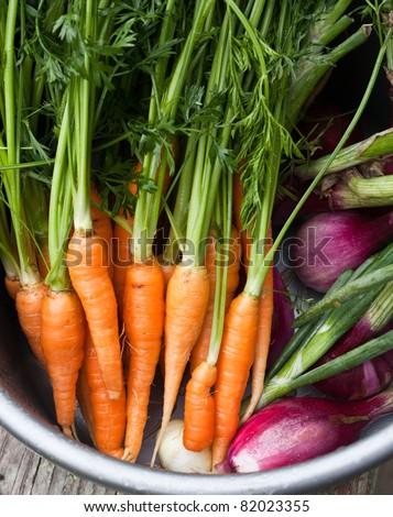 Fresh garden vegetables - stock photo
