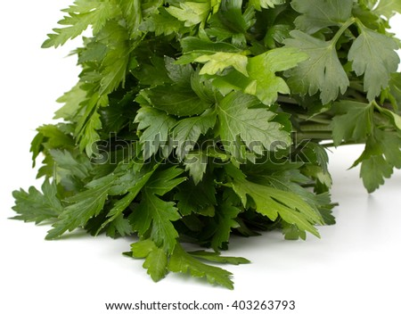 Fresh garlic bulbs with  parsley leaves isolated on white background - stock photo