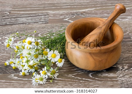 Fresh gathered chamomile with mortar and pestle on wooden background - stock photo