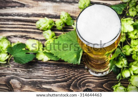 fresh glass of Beer with hop on a wooden table. focus on beer froth - stock photo