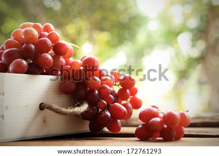 Fresh grape on wooden tray on bright background - stock photo