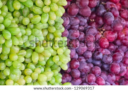 Fresh grapes - stock photo