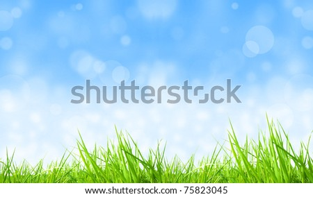 Fresh grass background with shiny blur sky - stock photo