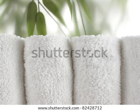 Fresh green bamboo leaves behind a frosted glass door panel - stock photo