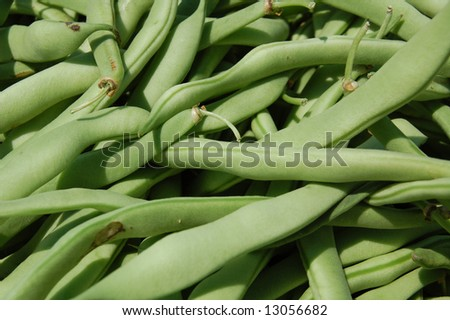 fresh green beans - stock photo
