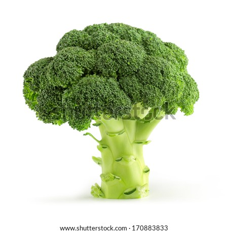fresh green broccoli isolated on white background - stock photo