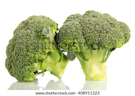 Fresh green broccoli isolated on white background. - stock photo