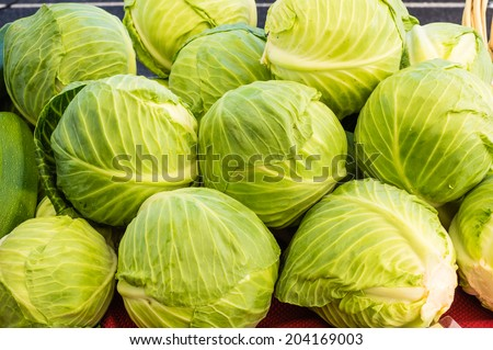 Fresh green cabbages on display at the local farmers market - stock photo