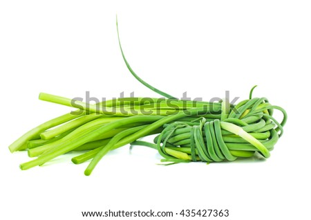 Fresh green garlic sprouts isolated on white background - stock photo