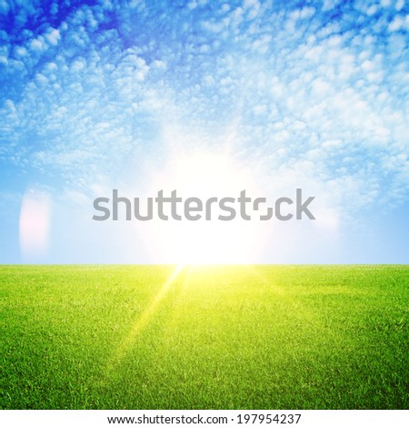 fresh green grass and blue sky - stock photo