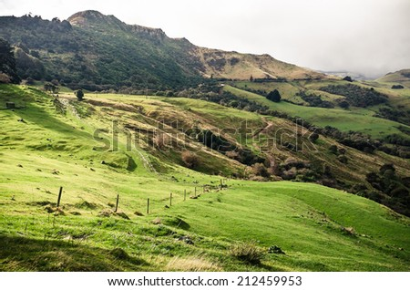 Fresh green landscape of New Zealand - stock photo