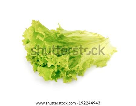 Fresh green leaf lettuce on white background - stock photo