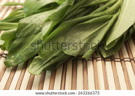 fresh green leaves of lettuce with drops   - stock photo