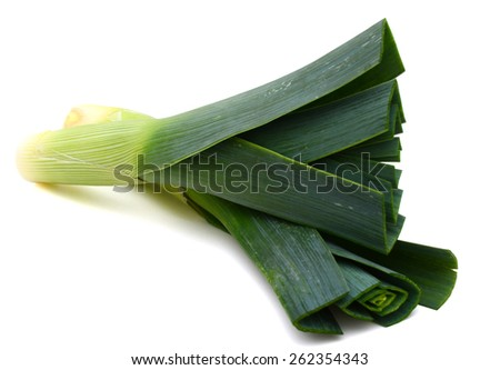 fresh green leek on white background  - stock photo