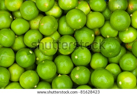 Fresh green lemon - stock photo