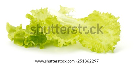 Fresh green lettuce isolated on white background - stock photo