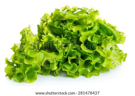 Fresh green lettuce isolated on white background - stock photo