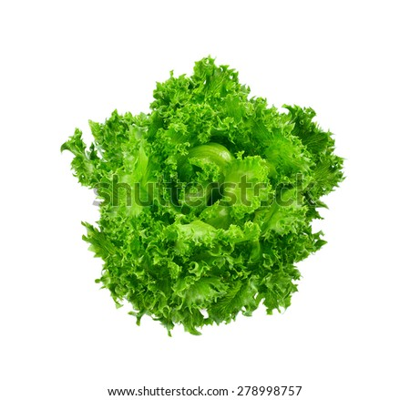Fresh green lettuce leafs isolated on white background - stock photo