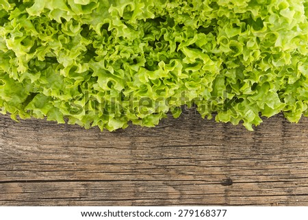 Fresh green lettuce salat on wooden background. Healthy food concept. Top view. - stock photo