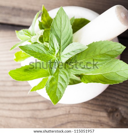 Fresh green mint in mortar on the table, shallow DOF - stock photo