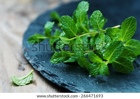 Fresh green mint on the wooden table, selective focus - stock photo