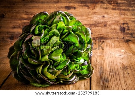 fresh green organic lettuce on a wooden rustic background - stock photo