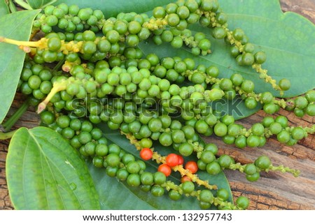 Fresh green peper on wood. - stock photo