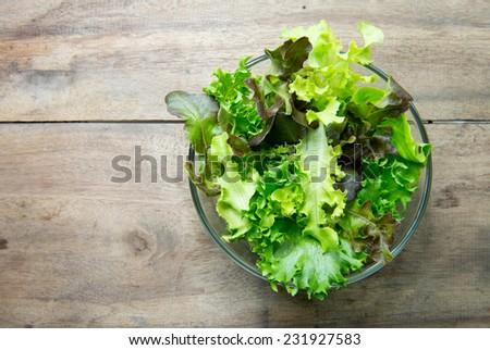 Fresh green salad  - stock photo
