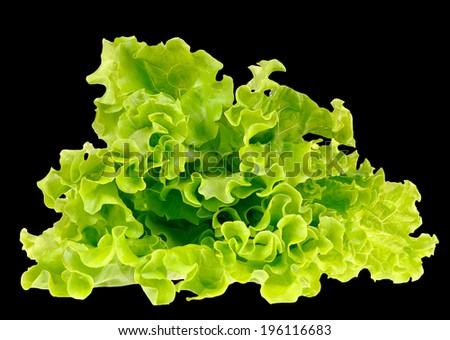 Fresh green salad isolated on black background - stock photo