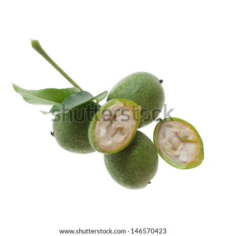 fresh green walnut with leaf isolated on white background - stock photo