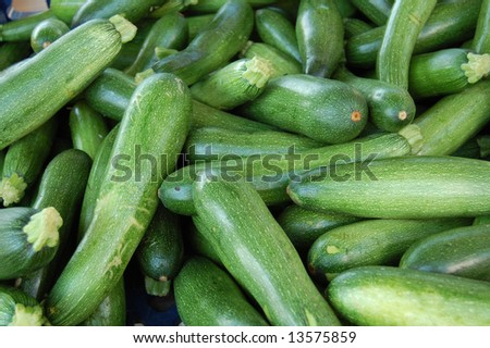 fresh green zucchini - stock photo