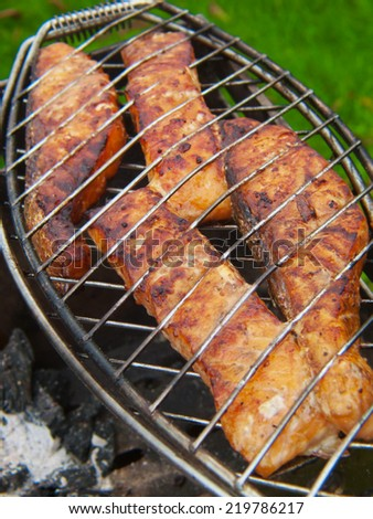 Fresh grilled salmon on the grill rack. - stock photo