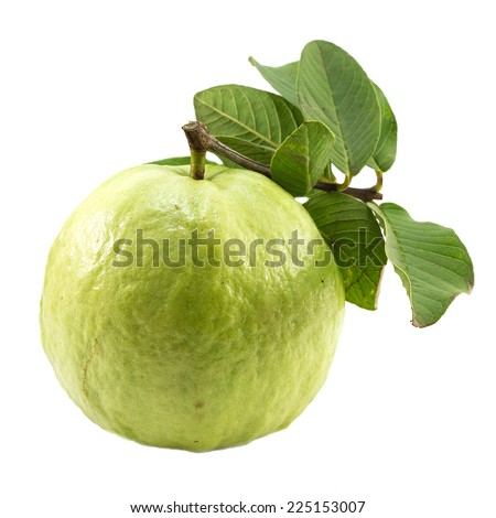 Fresh guava on white background. - stock photo