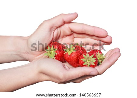 Fresh harvested strawberries lovingly presented between the protective hands of the young worker that just comes from the strawberrie field - stock photo