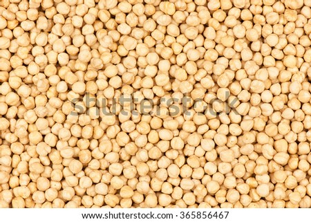 Fresh Hazelnuts top view  - stock photo
