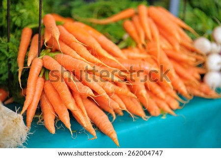 Fresh healthy bio carrots on Paris farmer agricultural market - stock photo