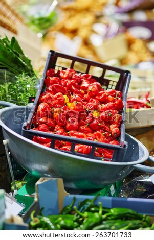 Fresh healthy bio red pepper on London farmer agricultural market - stock photo