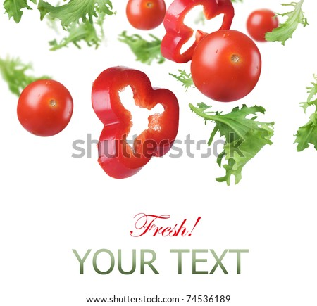 Fresh Healthy Vegetables Border - stock photo