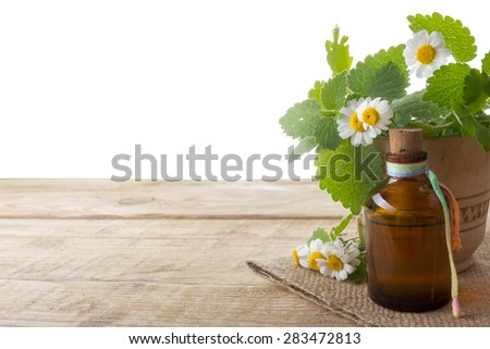 Fresh herb and bottle. Alternative medicine concept. Isolated on white background. - stock photo