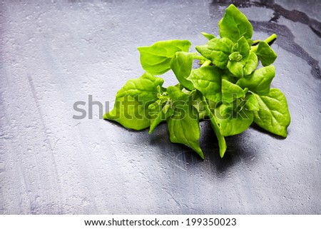 Fresh herb (spinach) over black  wooden background - stock photo