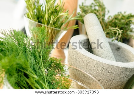 Fresh Herbs and Mortar for spices clode up - stock photo