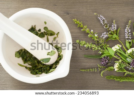 fresh herbs and spice plants on wooden - stock photo