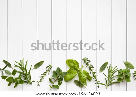 Fresh herbs border over white timber panel background. - stock photo