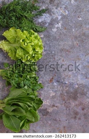 fresh herbs (dill, spinach, sorrel, lettuce, parsley, onion) on the table - stock photo