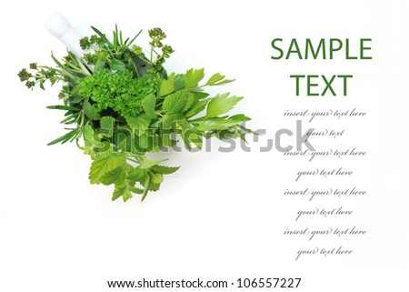 Fresh herbs from garden in the mortar with copy space - stock photo
